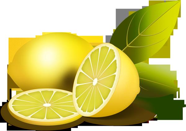 lemon clipart | Kiaavto