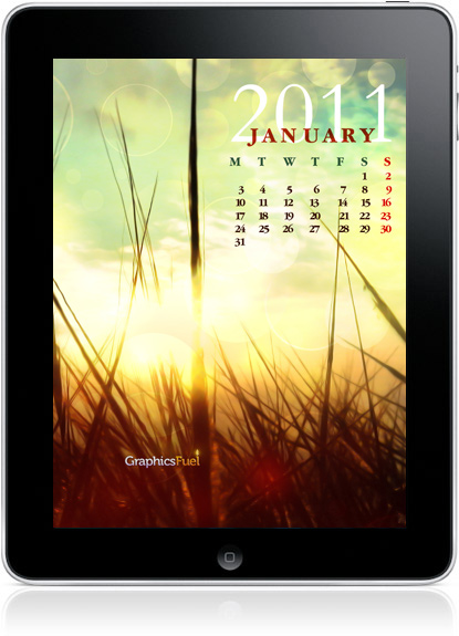 January Pictures For A Calendar 2011. Wallpaper January 2011