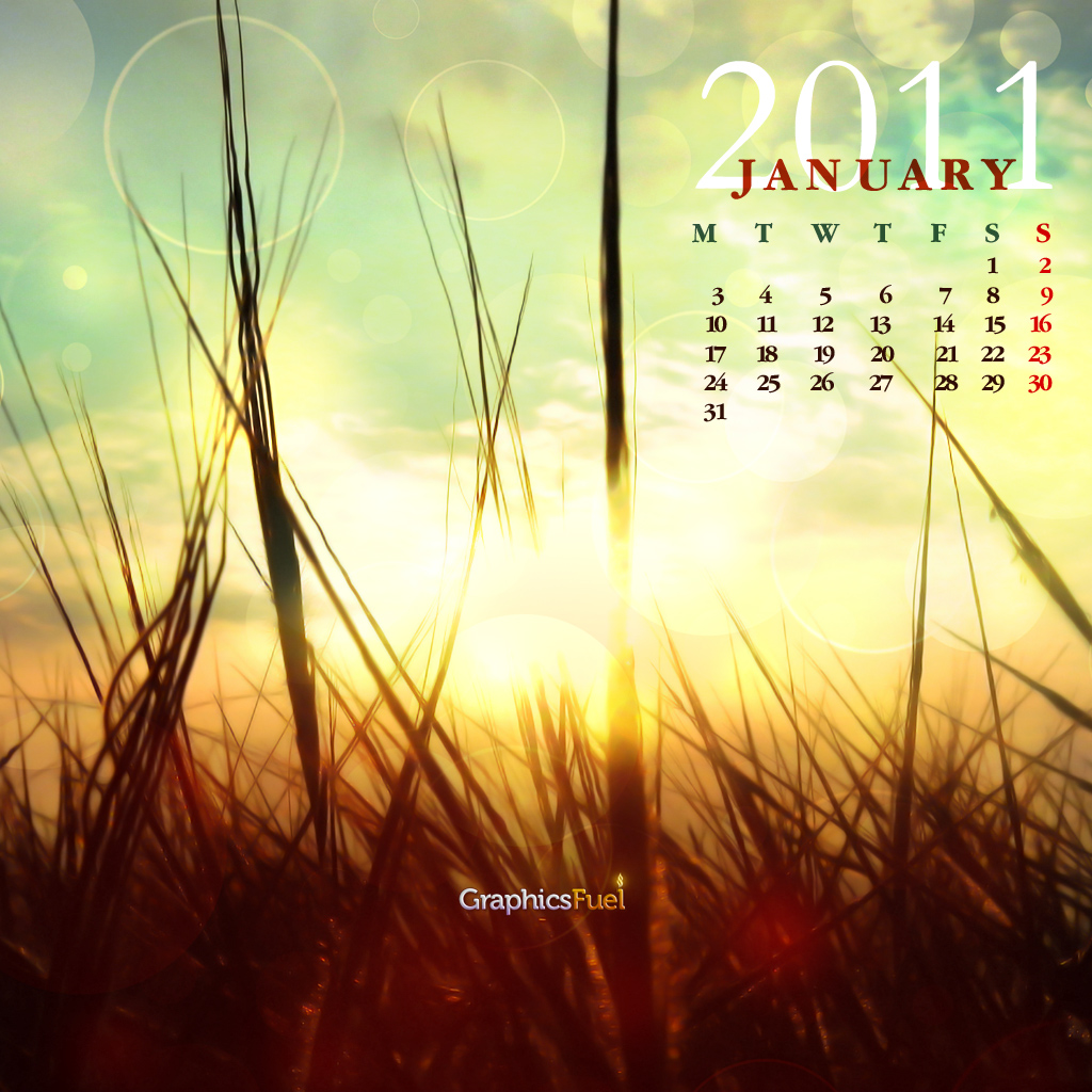 Calendar Wallpaper Ipad : Wallpaper calendar january on behance