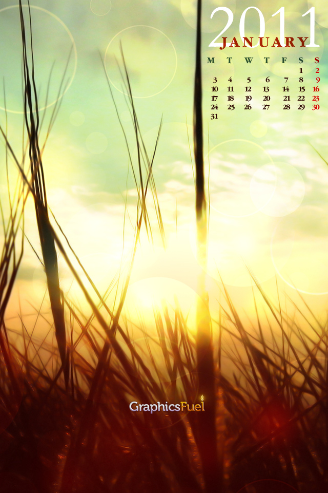 Download Wallpaper Calendar January 2011 files