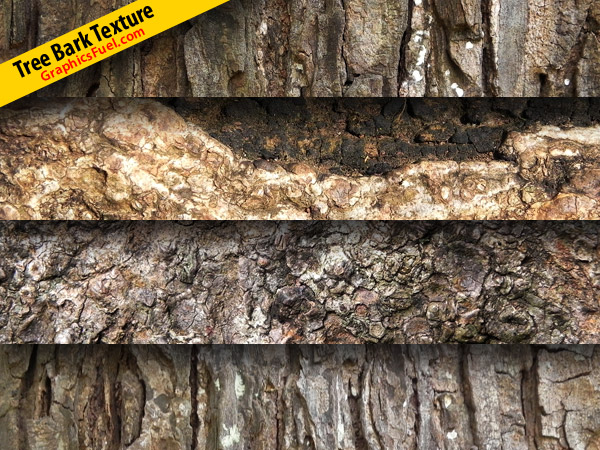 Tree bark texture pack