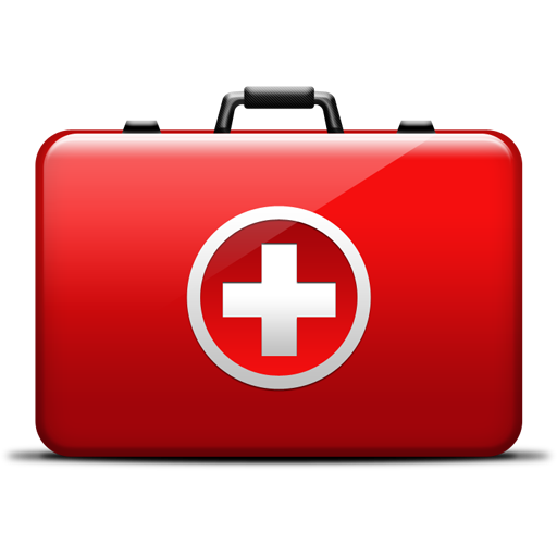Preview of the iconsMedical Bag Icon