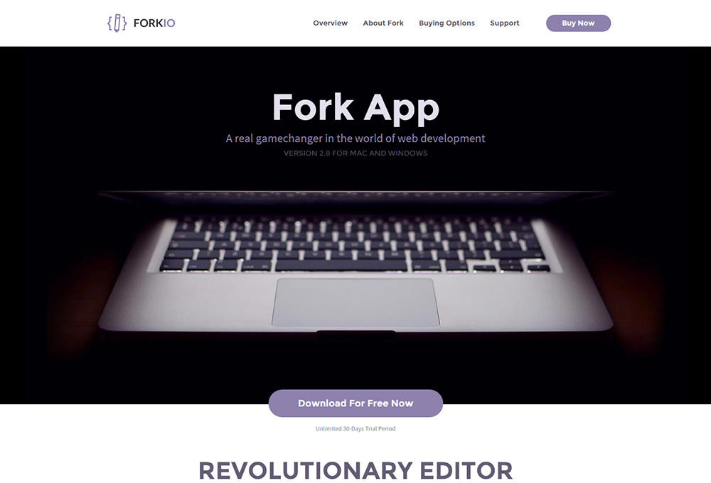 Forkio: Free One Page Website Template