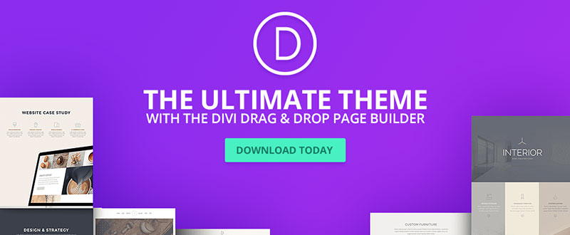 DIVI WP Themes