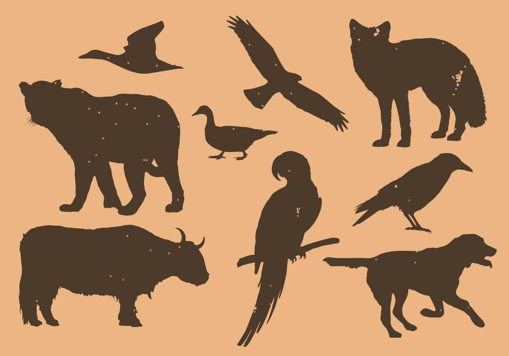 Animals and Birds Vector Silhouettes