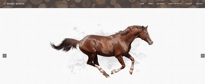Be Horse WP Theme