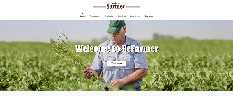Be Farmer WP Theme