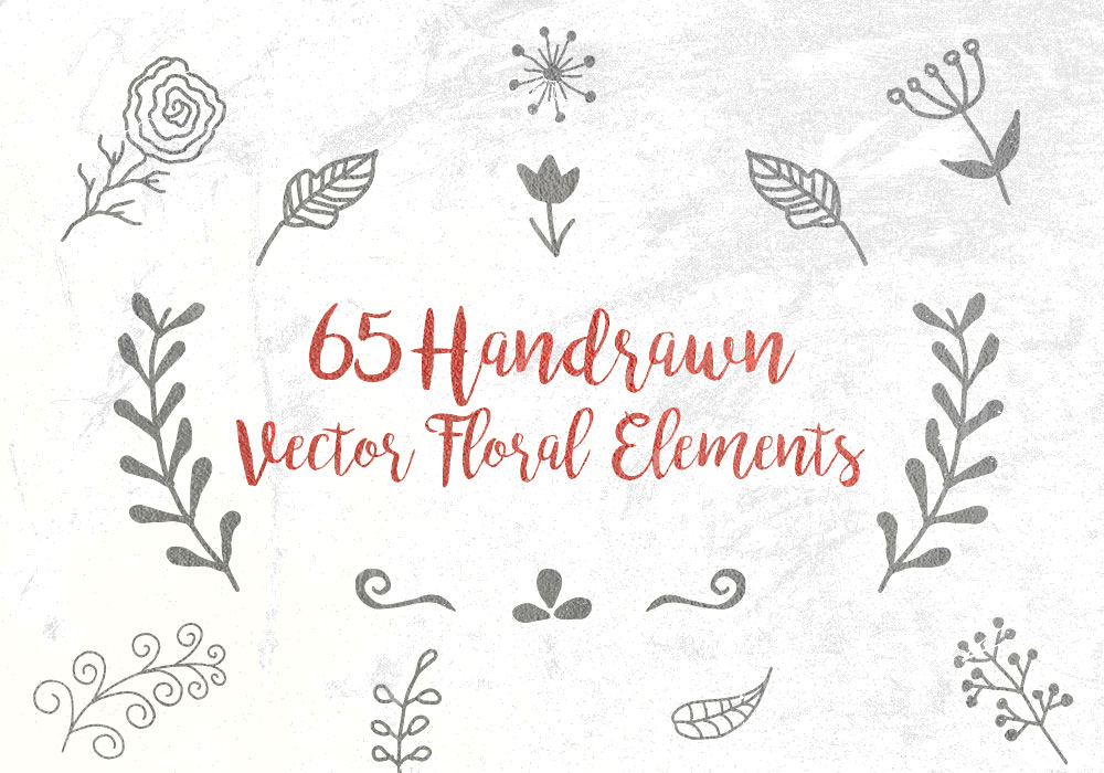 65 Hand-drawn Vector Decorative Floral Elements