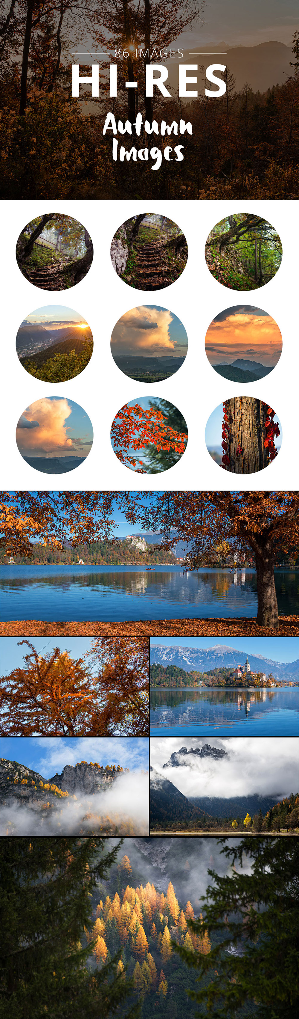 Photos Bundle Autumn