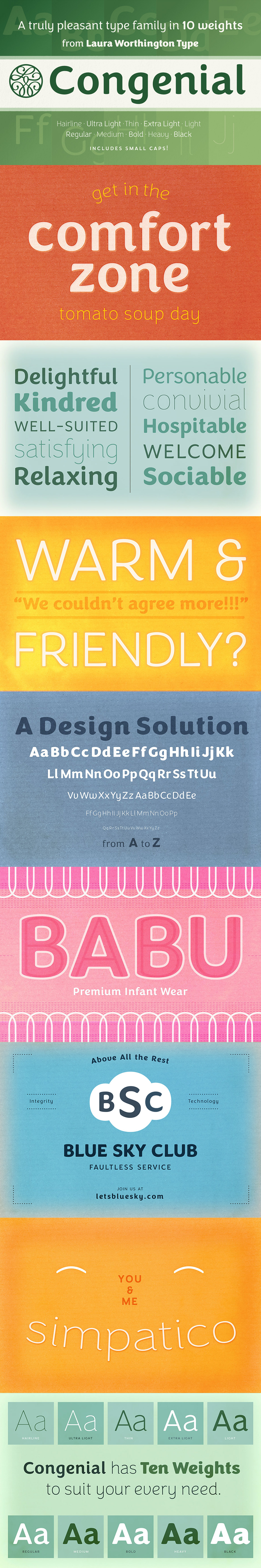 Definitive Fonts Bundle Congenial