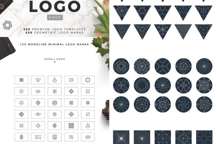 Premium Quality Vectors Bundle