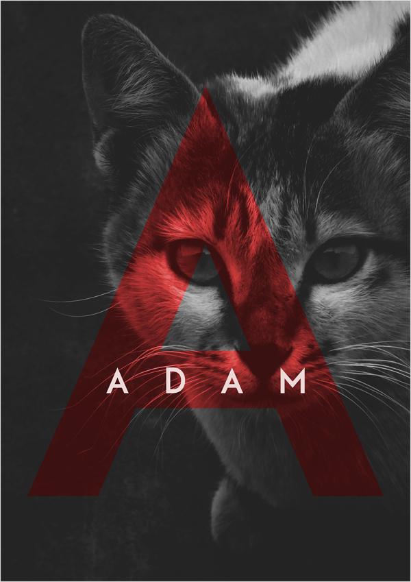 adam-free-font