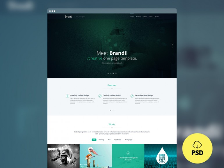 brandi-freebie-onepage-template-psd