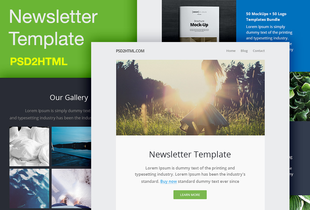 free newsletter template psd html graphicsfuel - Newsletter Templates