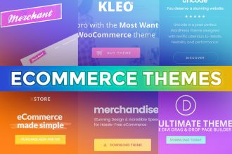 Awesome Ecommerce Themes To Build An Online Store
