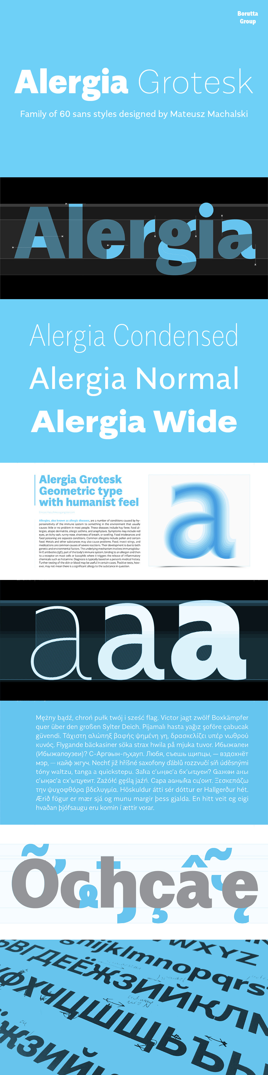 Definitive Fonts Bundle Alergia Grotesk
