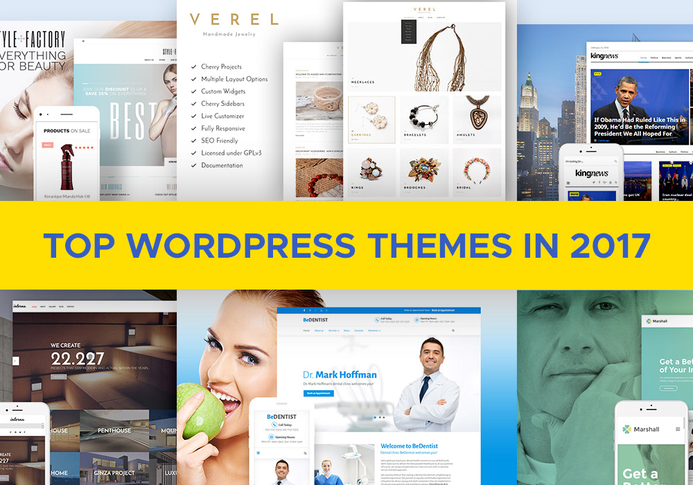 Top WordPress Themes in 2017