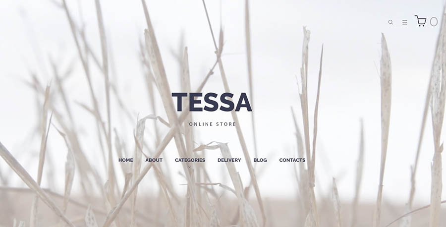 Tessa Online Shop