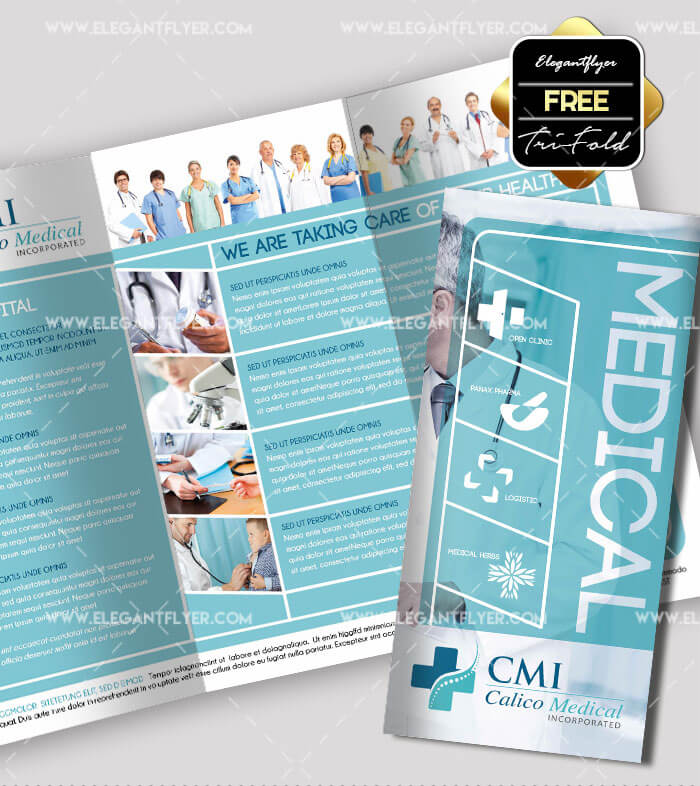 Free Professional Trifold Brochures For Business GraphicsFuel - Three fold brochure template free download