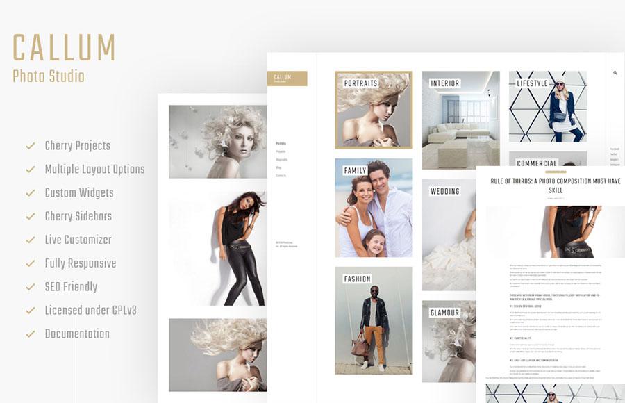 Online Portfolio WordPress Theme