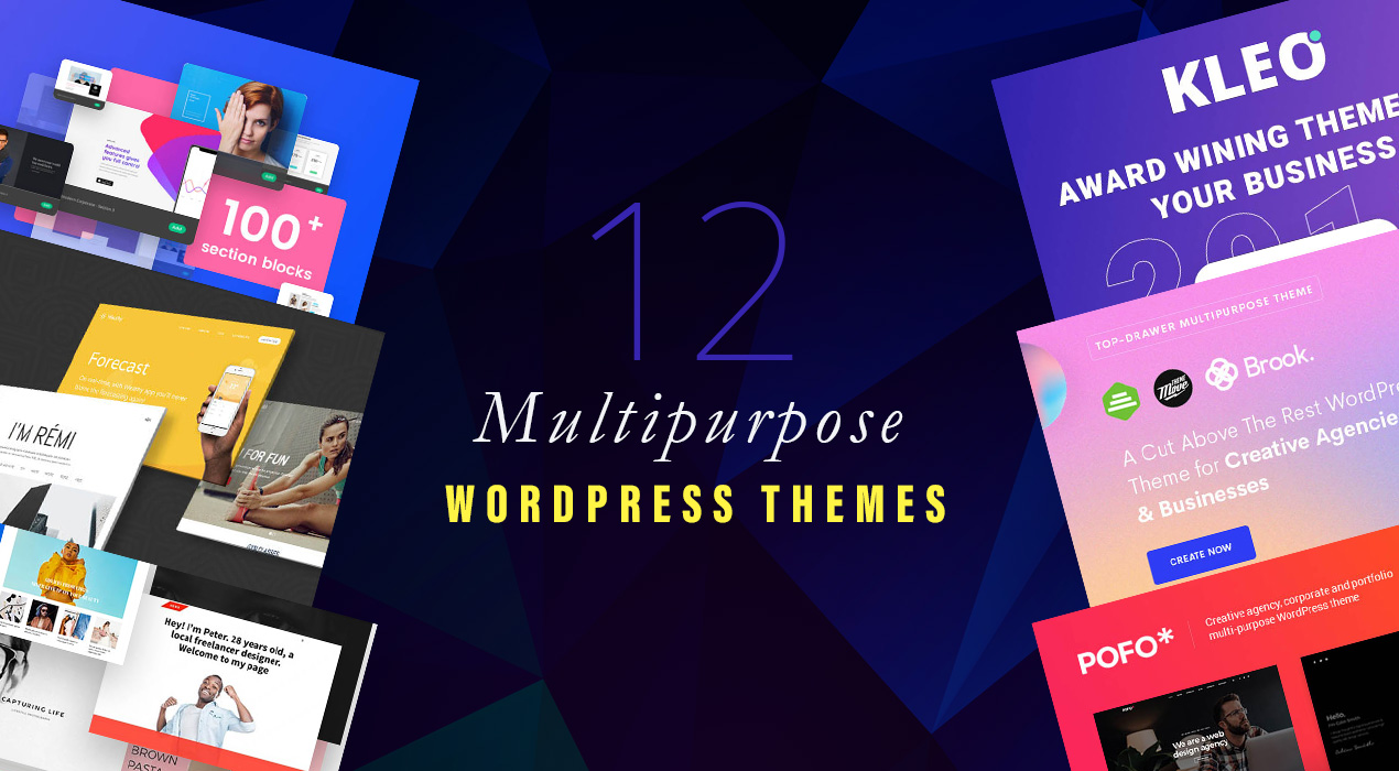 There's a multipurpose WordPress theme for you in this article. Check it out