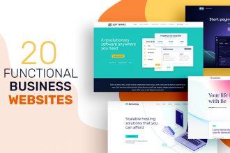 20 Functional Business Websites