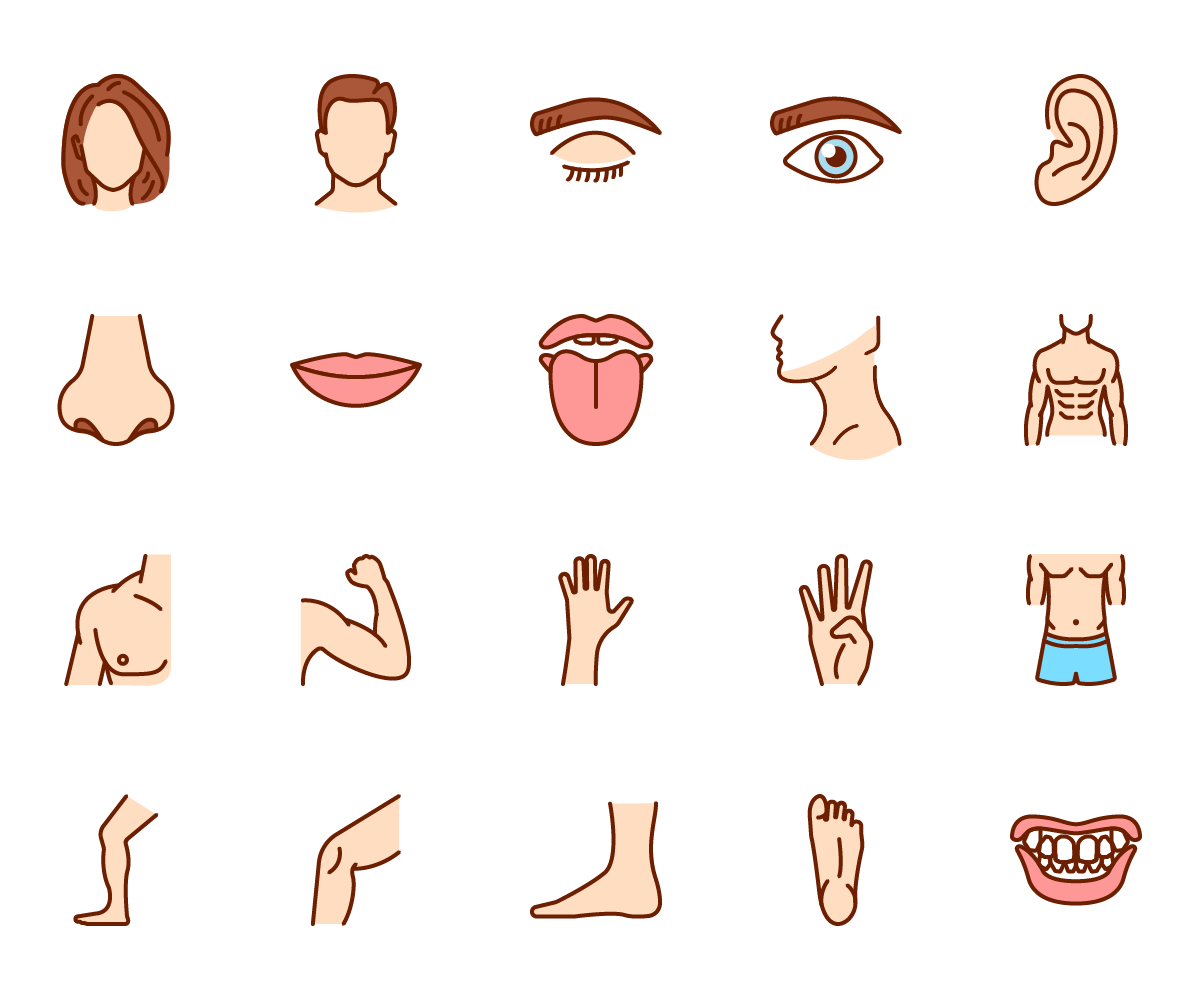 Human Body Colour Vector Icons