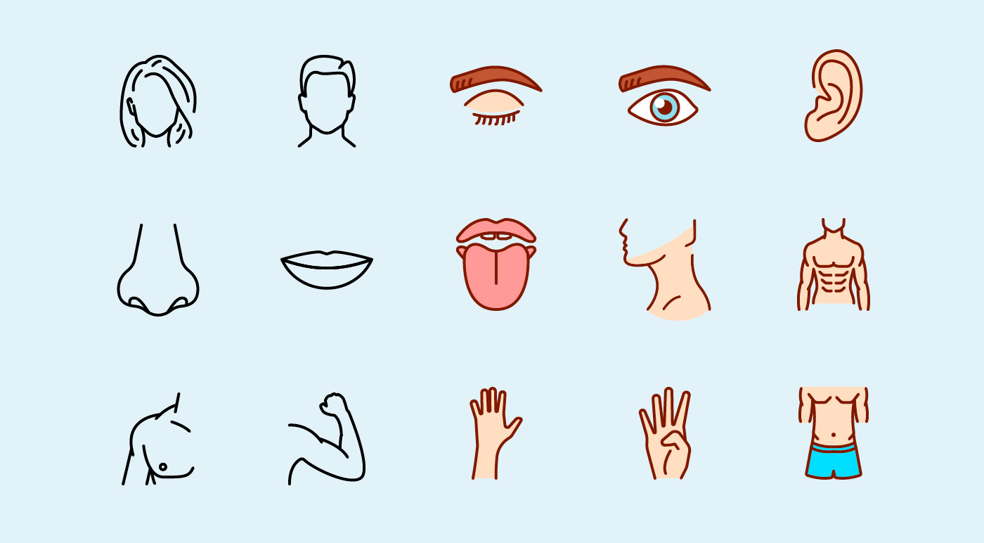 Human Body Parts Line And Colour Icons