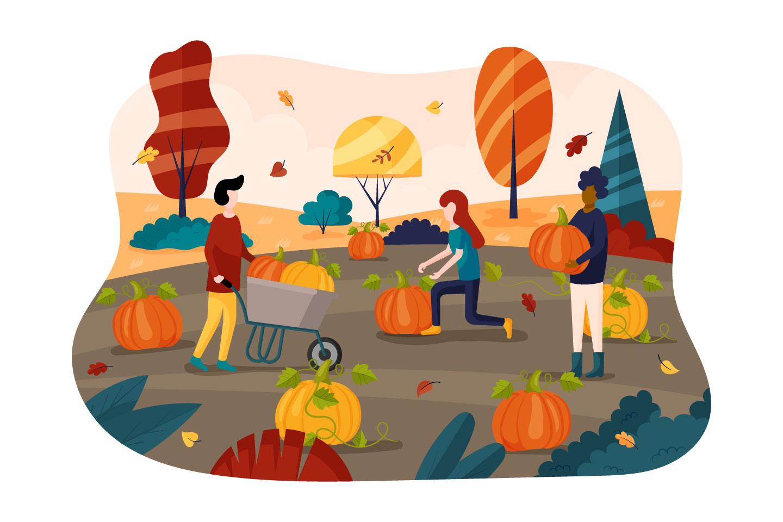 Free Autumn Harvest Pumpkin Vector Flat Design