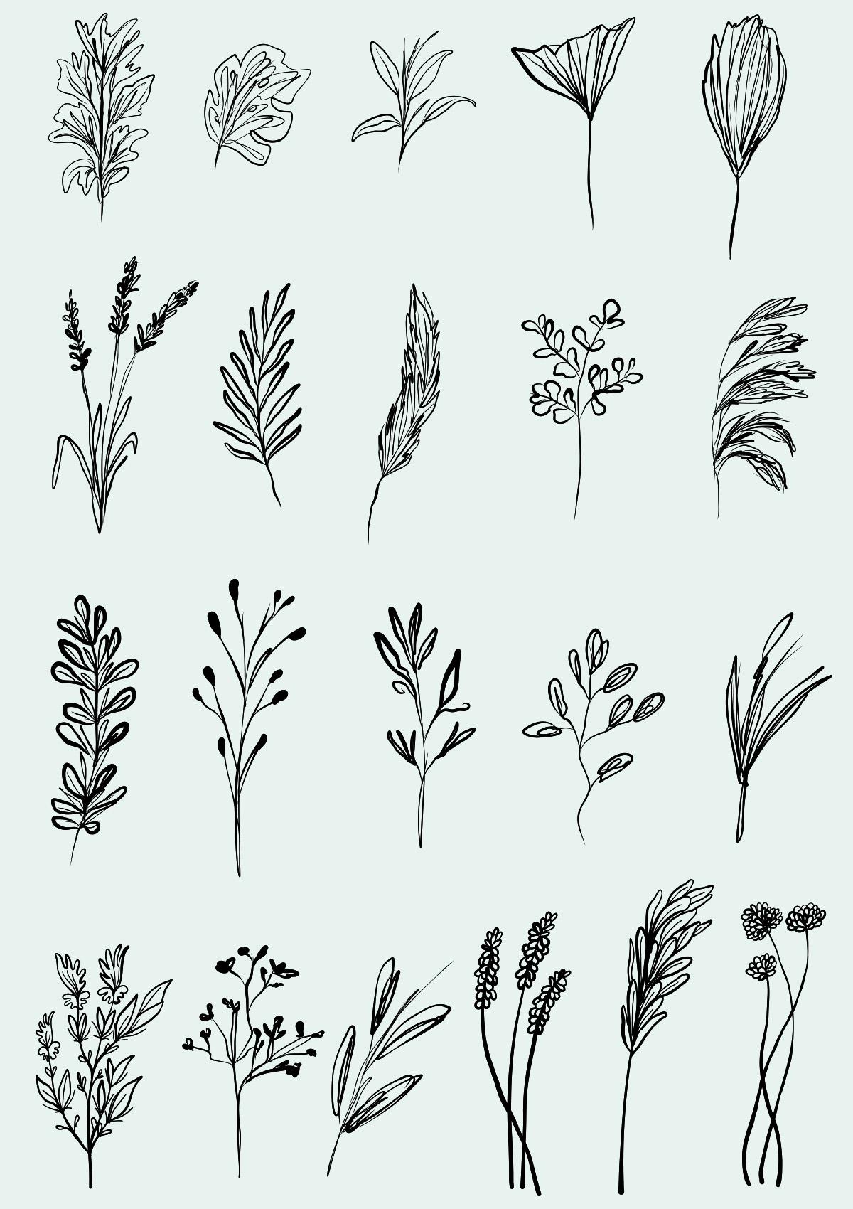 Hand Drawn Foliage Elements