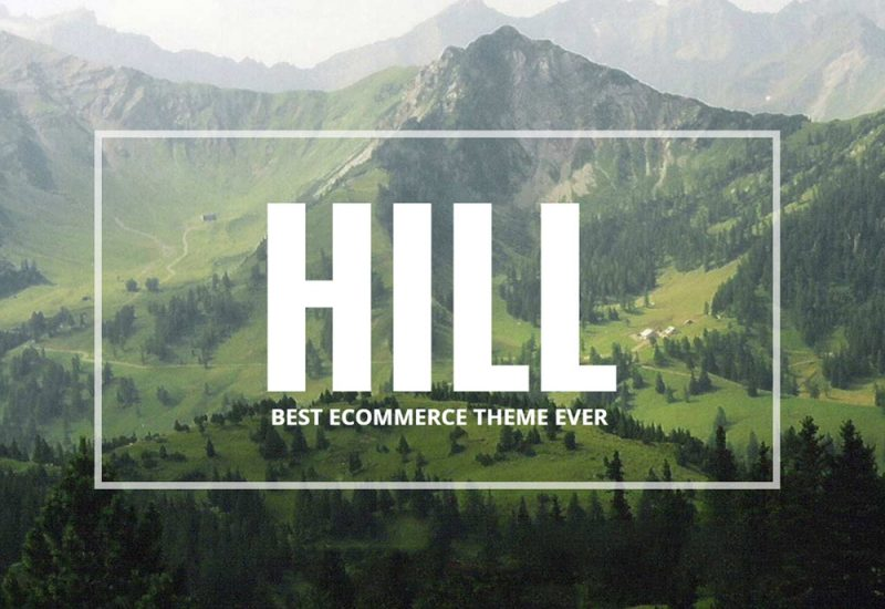 HILL Premium WP Woocommerce Theme