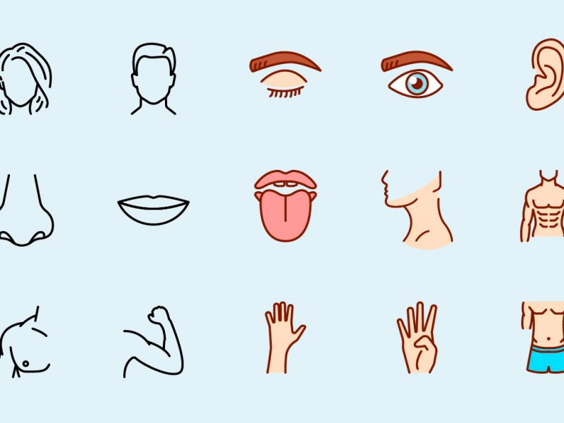 Human Body Parts Vector Icons