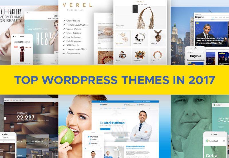 Top-WordPress-Themes-2017