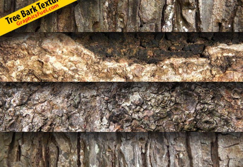 tree-bark-texture