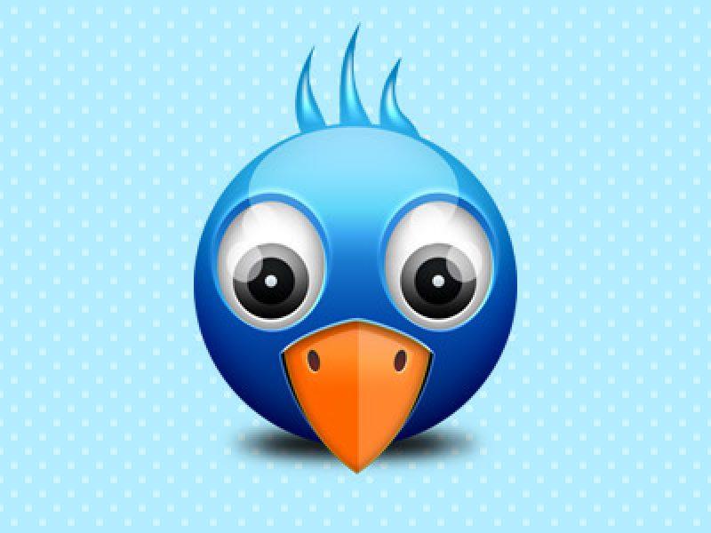 twitter-birdie-icon